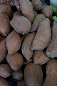 Cover photo for 2014 NC Sweetpotato Field Day