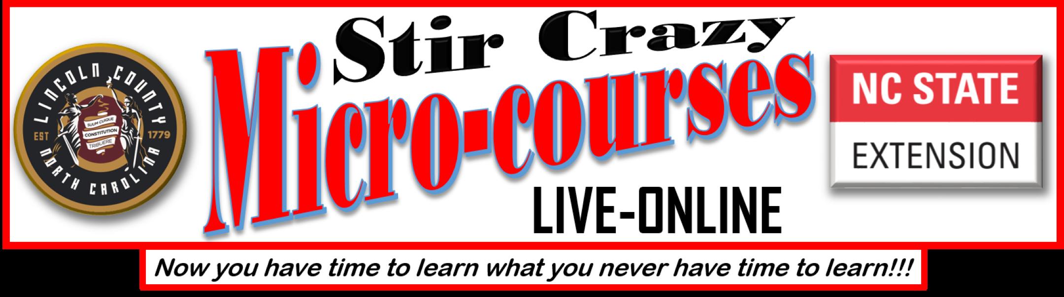 Stir Crazy Mico-Courses banner