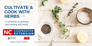 Cover photo for Cultivate and Cook With Herbs